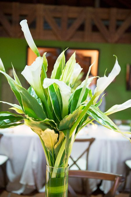 Callas La Fortuna Wedding Planner Meghan Cox Mil Besos, Photographer Lisa Blume Photography