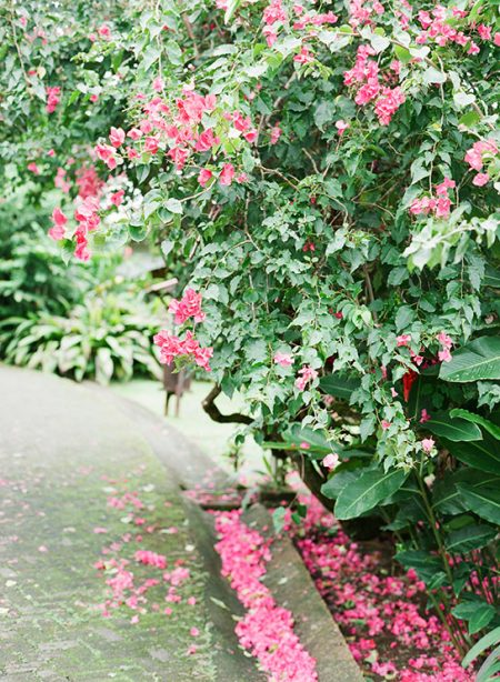 Tropical Flowers La Fortuna Wedding Planner Meghan Cox Mil Besos, Photographer Lisa Blume Photography