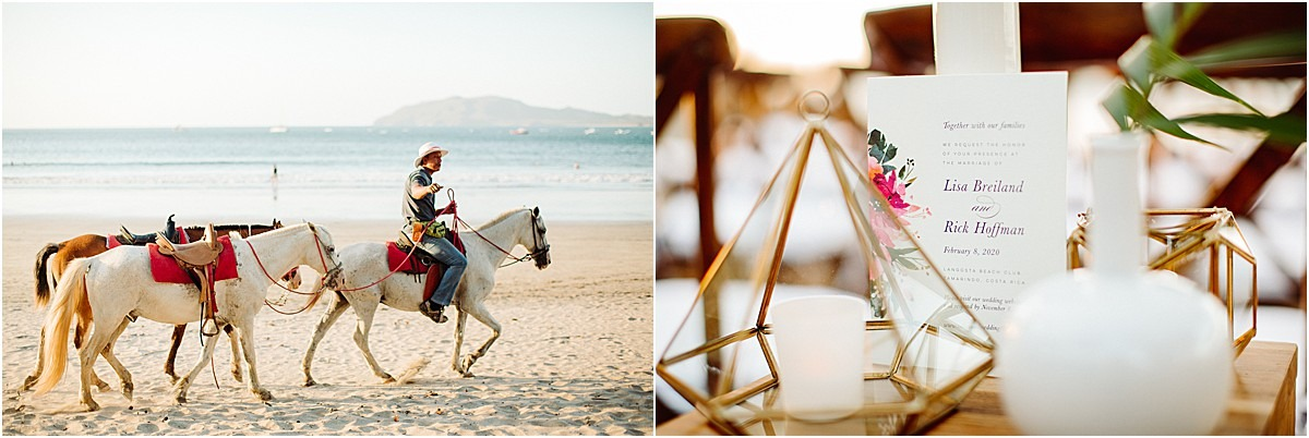 invites and morning horses on the beach