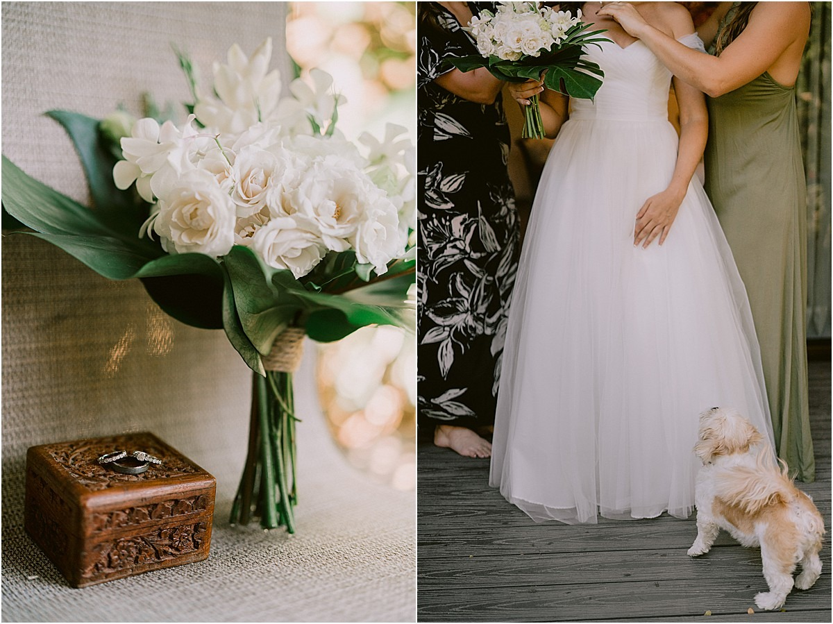 ring box wedding costa rica gown dog