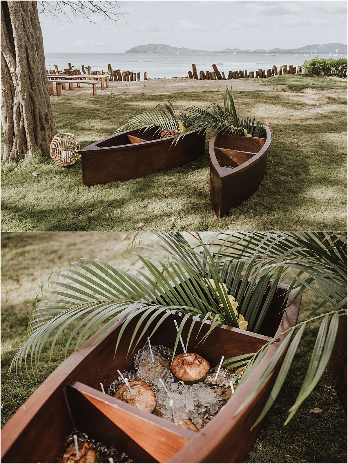coconuts in a canoe