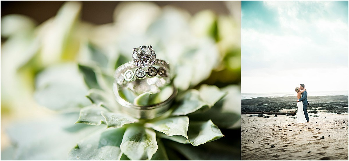 rings on succulents beach