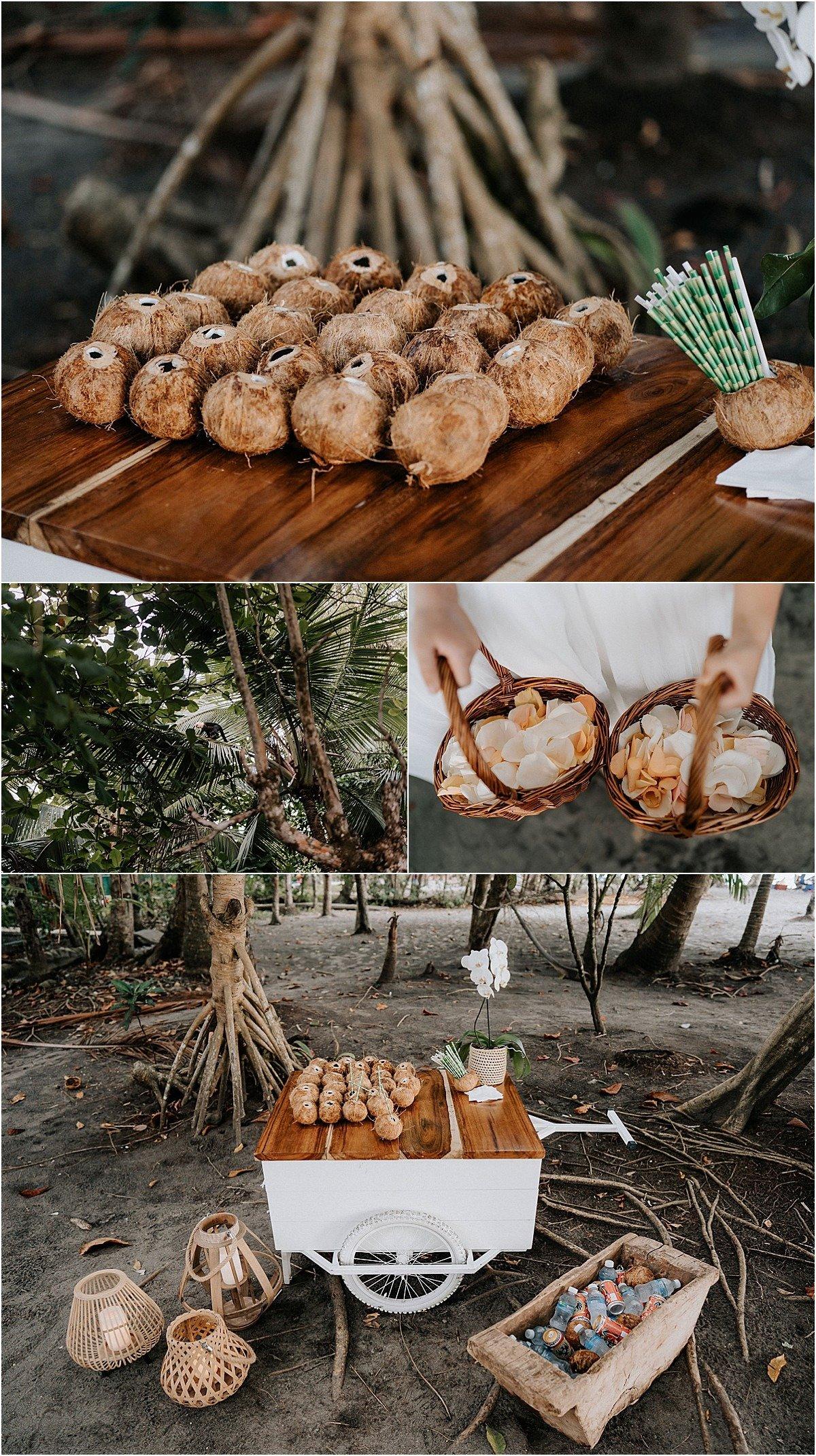coconut cart on the beach fresh coconut milk