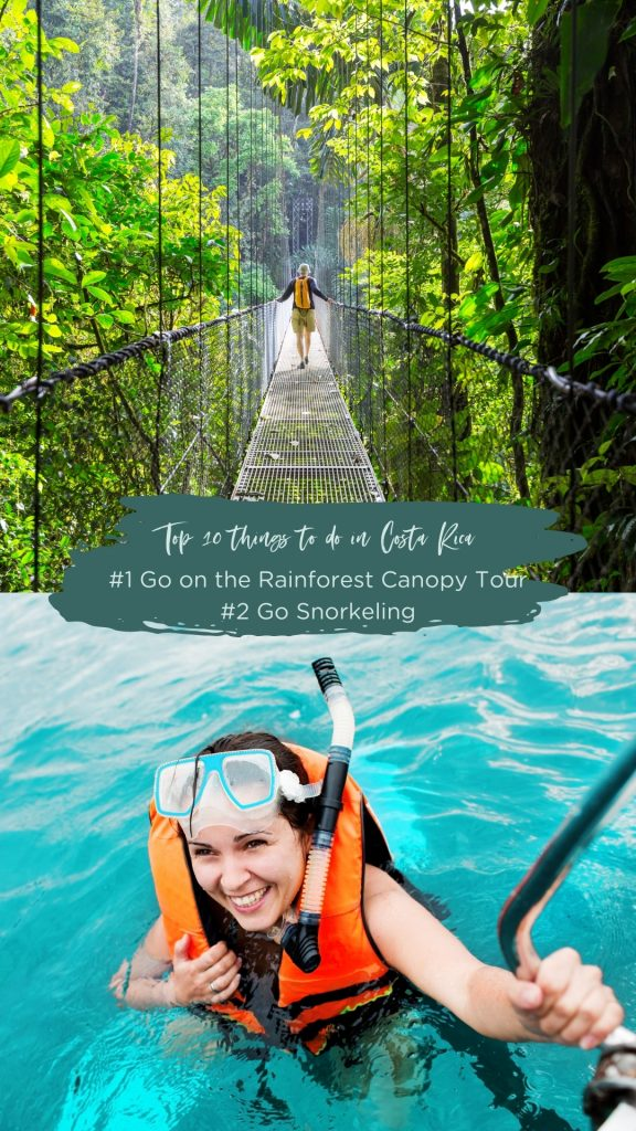 Rainforest Canopy Tour and Snorkeling