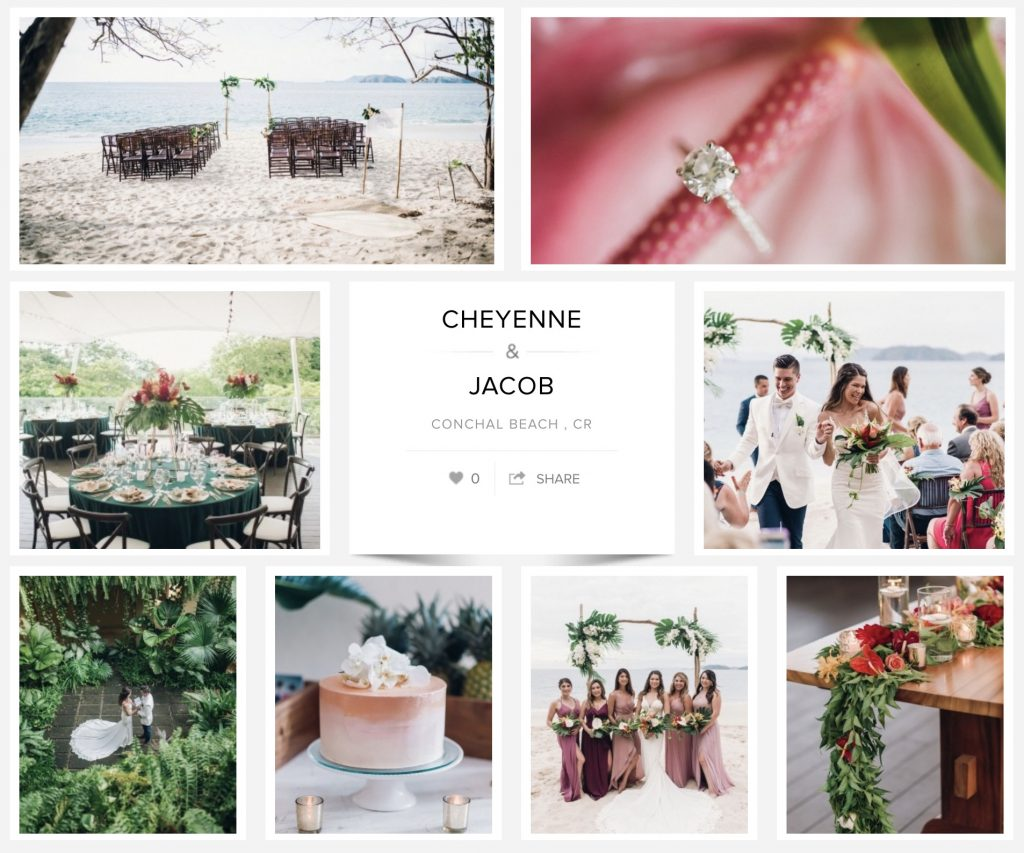New Conchal Wedding Featured Carats and Cake